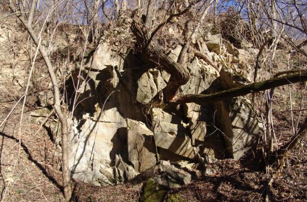 Dyke de andezit în formațiunite metamorfice de la Băișoara