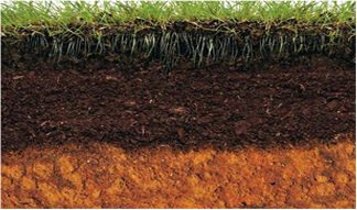 "2016 ESSC INTERNATIONAL CONFERENCE ""SOIL – OUR COMMON FUTURE"
